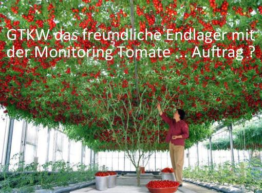 Hinweis an die Bevölkerung der Bundesrepublik Deutschland und die Kommission Endlager hoch radioaktiver Abfallstoffe Bundestag