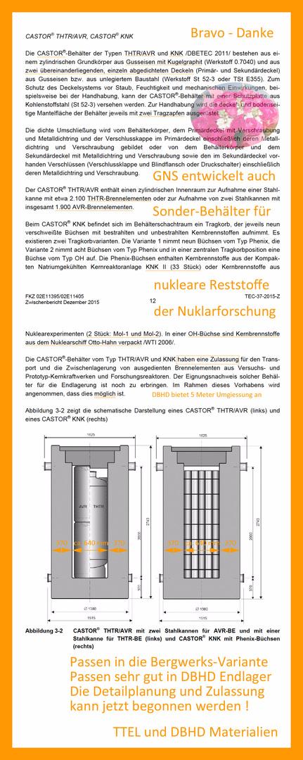 Castor THTR for special waste but no Plutonium