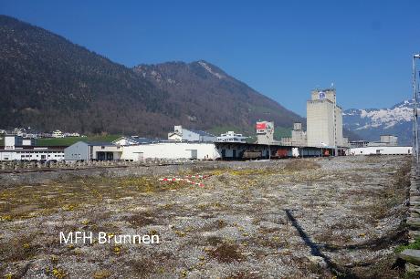 Holcim Zementfabrik Brunnen Areal Nova Brunnen - Teilgeräumt, Vorschlag Teil-Bebauung ...