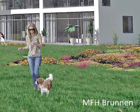 MFH Brunnen - Stockwerkeigentum Wohnung kaufen Brunnen Wohnung mieten Brunnen