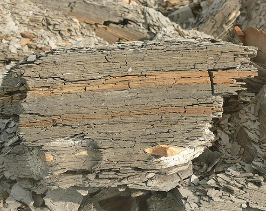 Tonstein - kommt nur in dünnen Schichten vor - ist auch unten trocken und klüftig  - Opalinuston im Bild zu sehen