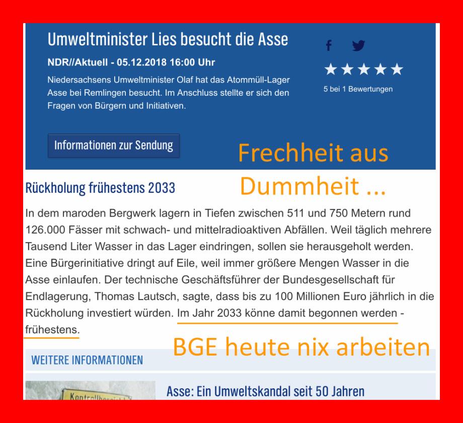 BGE GmbH - Asse - die faule Skandalfirma des Staates auflösen
