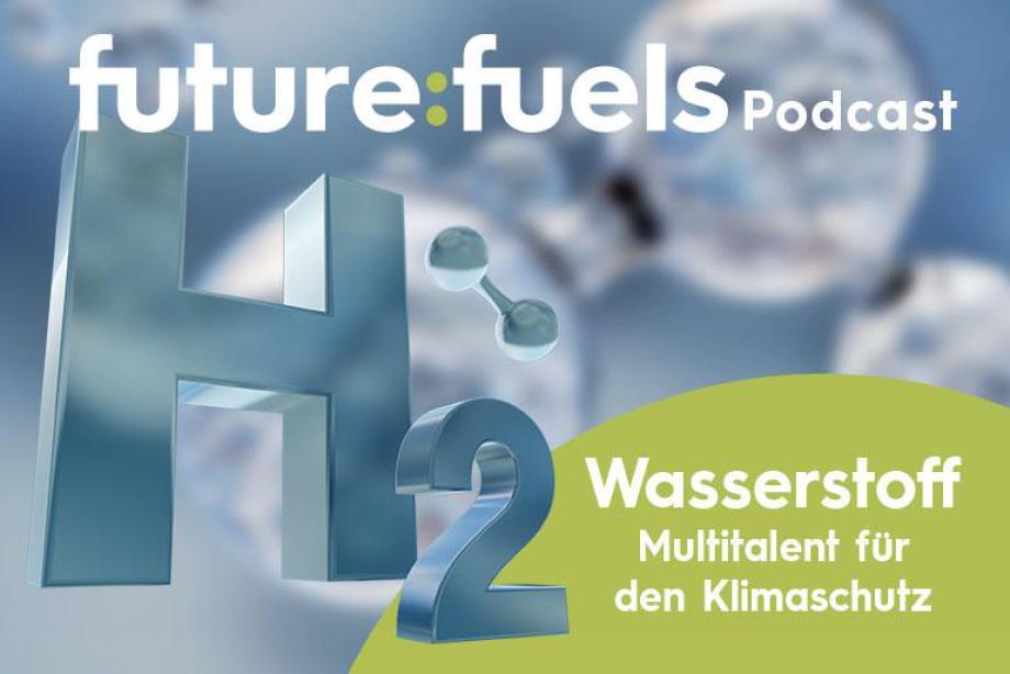 Die Wasserstoff-Kampagne des BMWi läuft - 9 Mrd EUR sind Rekord - Miti Japan