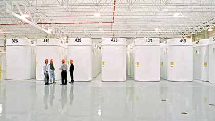 Dry storage containers for spent fuel from Candu Reactors Canada