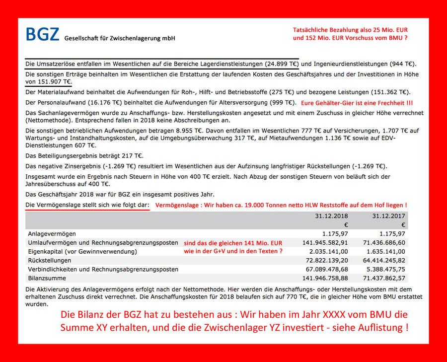 >>> Die BGZ lagerte in 2018 HLW Castor Container in 2 Zwischenlagern - und jetzt sehen Sie sich mal die G+V und die Bilanz an - da stimmt etwas nicht #BGZ #Zwischenlagerung #Castoren #Wirtschaftskriminalität