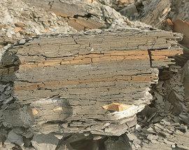 Tonstein - dünnschichtig, bröckelig, feucht - trocknet bei Wärme aus und bildet Risse