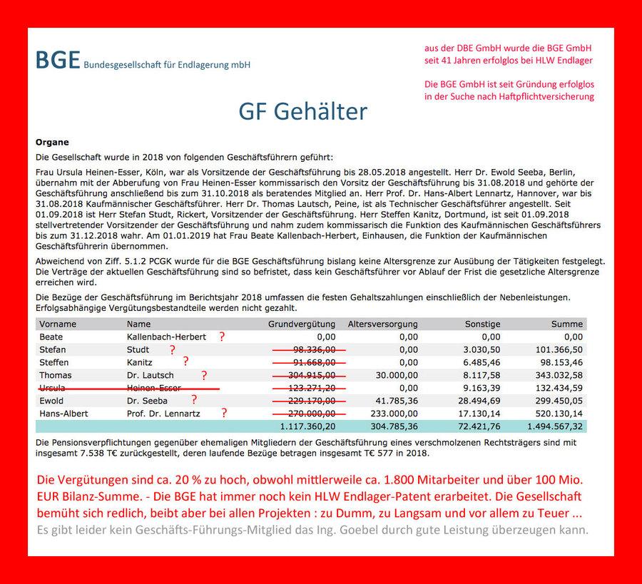 Bilanz der BGE GmbH - würden Sie von diesem Unternehmen ein Endlager kaufen ?