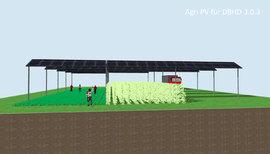 Agri PV - eine Chance für Deutschland