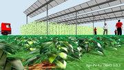 DBHD 3.0.3 braucht Strom und will eine eigene 37 MW Agri PV Anlage