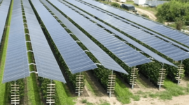 Agri Photovoltaik für Stromversorgung DBHD Endlager